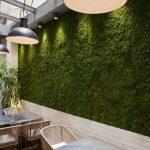 hierba-artificial-valladolid